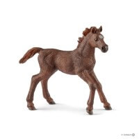 Schleich English Thoroughbred Foal Toy