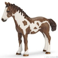 Schleich Pinto Yearling Toy