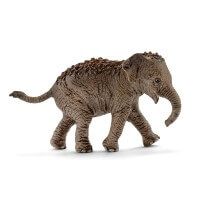Schleich Asian Elephant Calf 2017 Toy