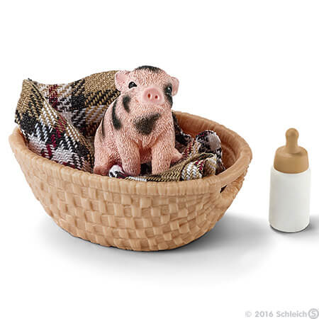 Mini Pig with Bottle