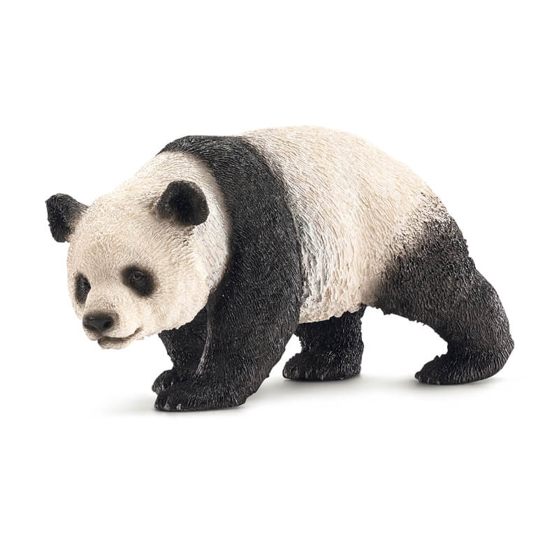 Giant Panda Female